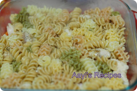 baked pasta with chicken-veg5