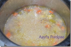 chicken vegetable soup9