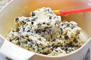 raisin and chocolate chip cookies5